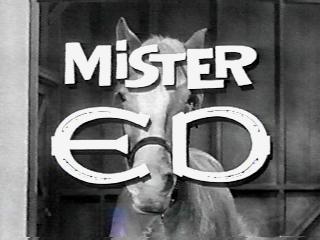 Mister Ed Logo